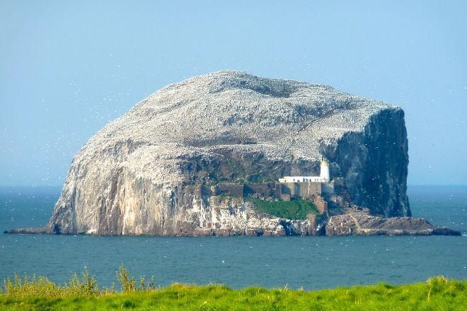 Bass Rock, North Berwick, United Kingdom