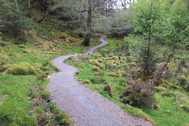 Culag Woods, Lochinver, United Kingdom