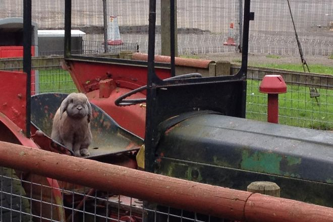 Farmyard Funworld, Bushey, United Kingdom