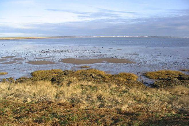 Lindisfarne National Nature Reserve, Holy Island, United Kingdom