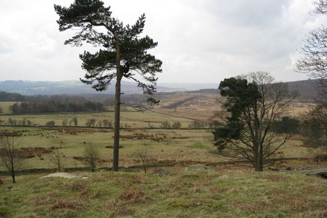 Longshaw Estate, Peak District National Park, United Kingdom
