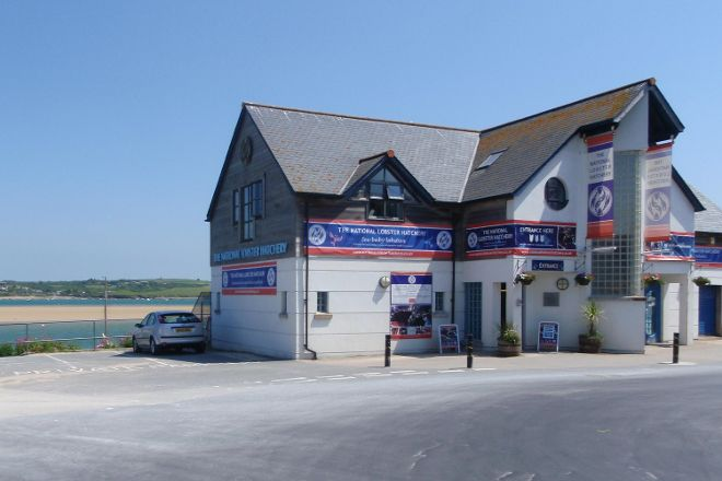 National Lobster Hatchery, Padstow, United Kingdom