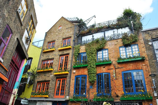 Neal's Yard, London, United Kingdom