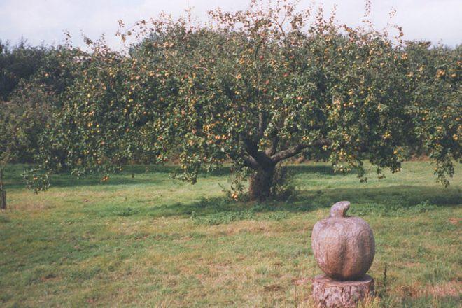 No Man's Orchard, Chartham, United Kingdom
