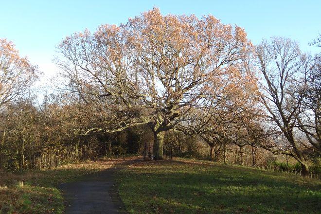 One Tree Hill, London, United Kingdom