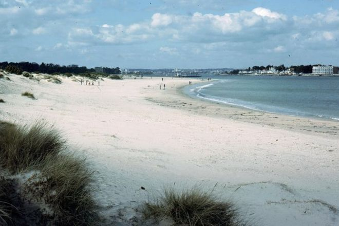 Shell Bay, Studland, United Kingdom