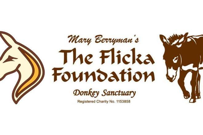 The Flicka Foundation - Donkey Sanctuary, Penryn, United Kingdom