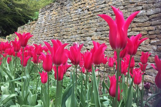 Upton House & Gardens, Banbury, United Kingdom