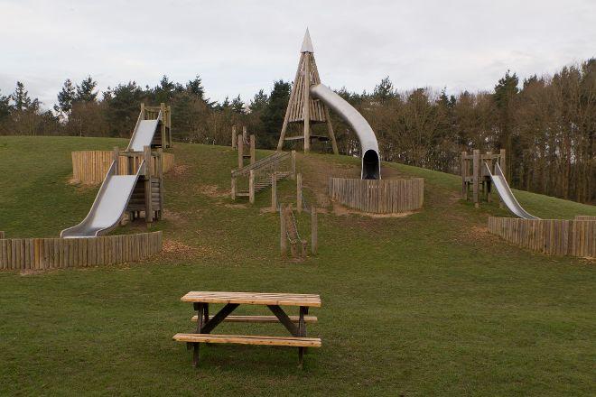 Wellington Country Park, Reading, United Kingdom