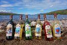 Adirondack Winery