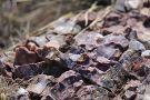 Alibates Flint Quarries National Monument
