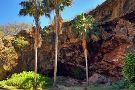Ancient Kauai Excursions