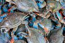 Benny Hudson's Seafood Market
