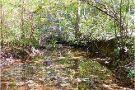 Birkhead Mtn Wilderness