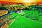 Blue Ridge Estate Winery