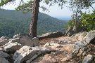 Buzzard Rock North