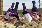 Catoctin Breeze Vineyard & Winery