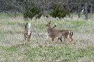 Chalco Hills Recreation Area