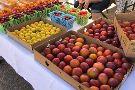 Corrales Growers market