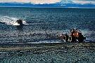 Discover Alaskan Adventures