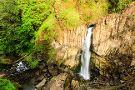 Drift Creek Falls Trail