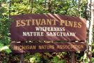 Estivant Pines Nature Sanctuary