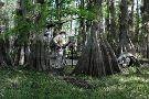 Florida Keys History & Discovery Center