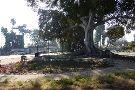 Founder's Park