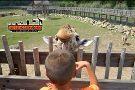 Frank Buck Zoo