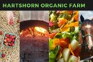 Hartshorn Organic Farm