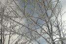 Hawksnest Snow Tubing and Zipline