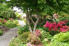 Highline SeaTac Botanical Gardens
