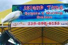 Island Time Dolphin & Shelling Cruises