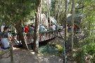 Jungle Adventures A Real Florida Animal Park