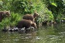Kodiak National Wildlife Refuge Visitor Center
