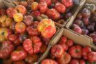 Leucadia Farmers Market