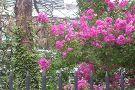 Liz Christy Bowery Houston Community Garden