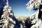 Loup Loup Ski Bowl