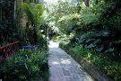 Macondray Lane