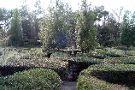 Magnolia Plantation & Gardens