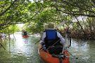 Motorized Kayak Adventures