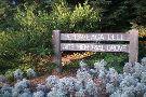 National AIDS Memorial Grove