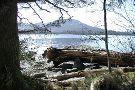 Northern Tours of Alaska