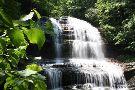 Pearson's Falls and Glen