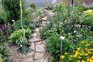 Perennial Plant Peddler