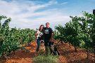 Rancho Rossa Vineyards