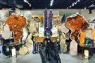 Rare Earth Gallery