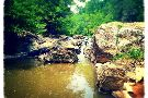 Richland Creek Canopy Tours