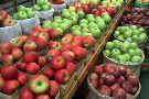South Bend Farmer's Market