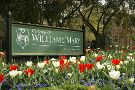 College of William & Mary